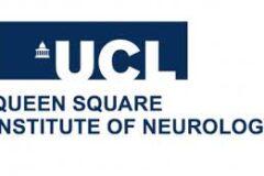 英国で未来の脳神経内科・脳神経外科医を目指す方に朗報です!